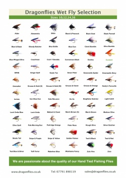 Wet fly catalogue free download
